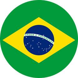 Iconebandeira